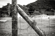 Image Of Old Fence And Gate In Black And White