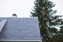 A Slate Roof On An Older Home Next To A Pine Tree.