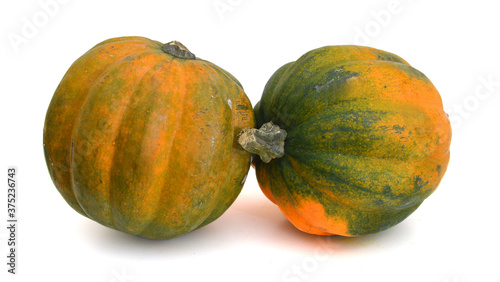 Photo Studio close up of acorn squash isolated on white background with light shadow