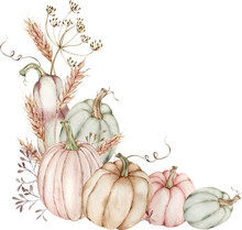Watercolor Illustration Of Corner Border With Pumpkins And Ears Of Wheat, Flowers Of Dill. Thanksgiving Arrangement.