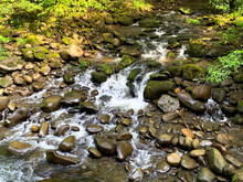 Babbling Brook Flowing Over  M...