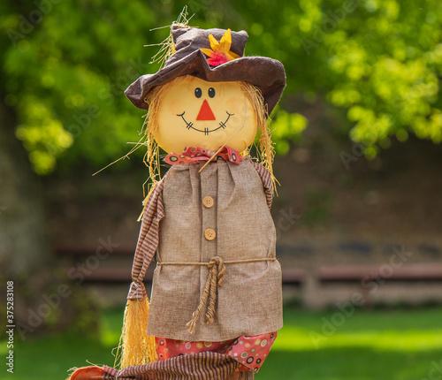 Fototapeta scarecrow in the park