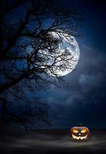 One Spooky Halloween Pumpkin, ...