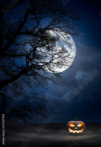 Fotografia, Obraz One spooky halloween pumpkin, Jack O Lantern, with evil face and eyes under the silhouette of a tree at night with a full moon and misty sky