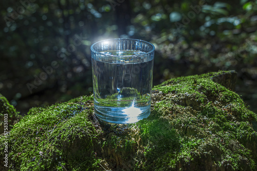 Obraz na plátne Glass of clean still water on tree stump with moss against green natural background