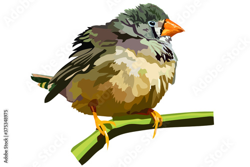 Fotografia vector image of a small bird with a yellow beak sitting on a branch