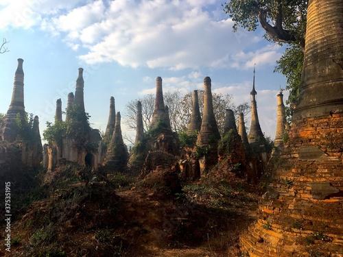 Obraz na plátně Forest of Pagodas