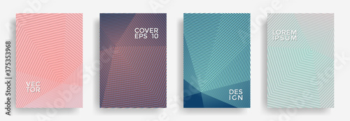 Fotografie, Obraz Hexagonal halftone pattern cover pages vector creative design.