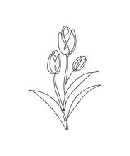 One Single Line Drawing Beauty Tulip Flower Vector Illustration. Minimal Tropical Floral Style, Love Romantic Concept For Poster, Wall Decor Print. Modern Continuous Line Graphic Draw Design