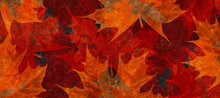 Abstract Colorful Flower Flowers Leaves Fall Grunge Background Paint Art Texture