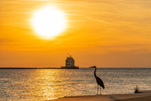 Orange Sunset Over Calm Water Overlooking Lighthouse With Large Heron Bird