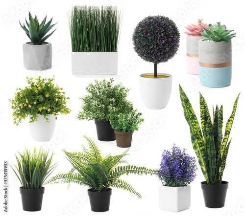 Set of artificial plants in flower pots isolated on white Canvas