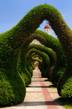 Topiary Garden Archways And Pa...