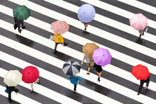 People With Colorful Umbrellas Crossing A Street In Shibuya, Tokyo, Japan
