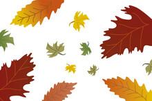 Orange Yellow Green Leaves Falling Pattern Autumn Time Hygge Warm