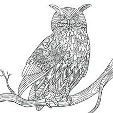 Owl With Doodle Feathers Sitti...