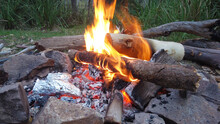 Roaring Camp Fire