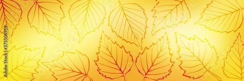 Canvastavla Autumn background of leaves, vector design