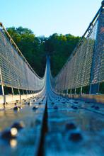 Geierlay Suspension Rope Bridge
