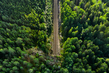 Aerial View Of The Railway Tra...