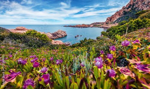 Picturesque morning view of popular tourist destination - Costa Paradiso, Sardinia island, Italy, Europe. Attractive Mediterranean seascape. Beauty of nature concept background.