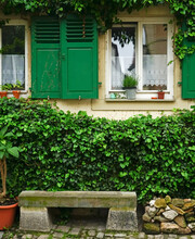 Bench Under The Window With Plants. Big Bushes Next To The Bench With Fresh Green Leaves. Old Home Building In Europe, Vintage Exterior Style.