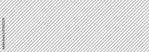 Gray line background. Vector illustration Fototapeta