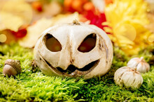 White Ceramic Halloween Jack-o...