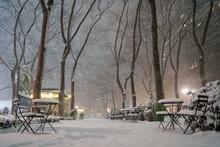 New York Winter: Snowy Park At Night