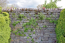 A Dry Stone Wall With Lichen Growing On It In An English Garden