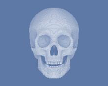 Pixilated Or Blocky Skull On G...