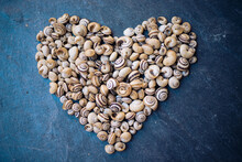Heart Figure With Snails