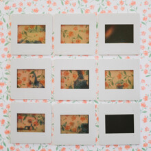 Nine Transparencies In Row On Floral Background