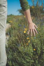 Woman's Hand Fluttering Butterflies