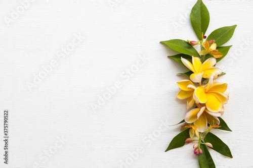 Obraz na plátně yellow flowers frangipani local flora of asia arrangement flat lay postcard styl