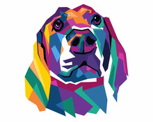Colorful Dog With Style Pop Art
