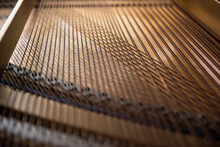 Strings Inside The Grand Piano