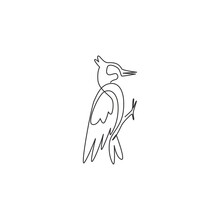 Single Continuous Line Drawing Of Beauty Woodpecker For Company Logo Identity. Little Cute Bird Mascot Concept For National Park Icon. Modern One Line Draw Design Graphic Vector Illustration