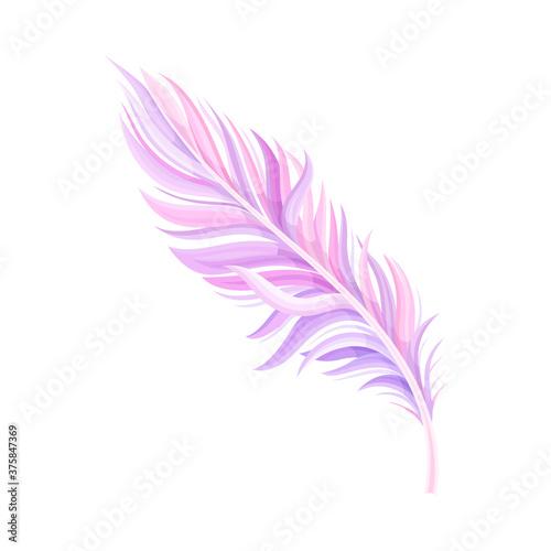 Fotografie, Obraz Purple Bird Feather with Nib as Avian Plumage Vector Illustration