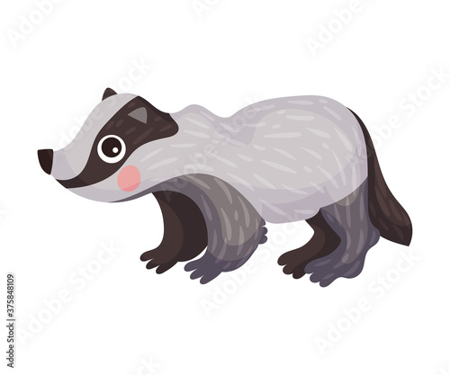Foto Cute Badger as Carnivore Forest Animal Vector Illustration