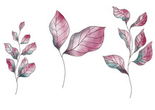 Watercolor Autumn Leaves Red A...
