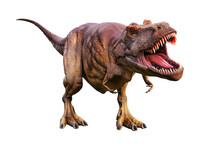 Tyrannosaurus Rex Or T_Rex Scientifc And Realistic Reconstitution Isolated On A White Background. 3D Rendering Illustration Of The King Of Dinosaurs.