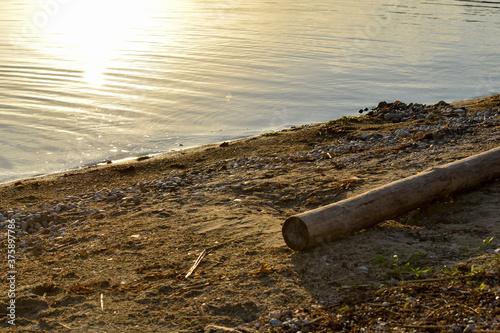 Obraz Gruba, drewniana belka na plaży nad jeziorem. - fototapety do salonu