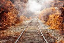Railway In The Autumn