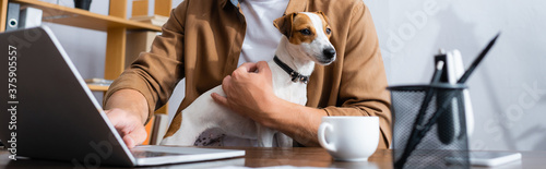 Tela cropped view of businessman with jack russell terrier dog working at laptop near