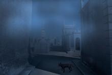 Moonlit Foggy Old European Cem...