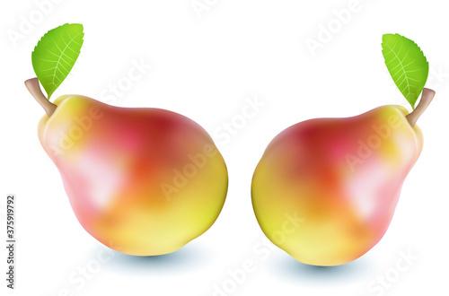 Fotografie, Obraz pear isolated on white background