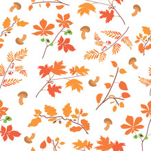 Pattern With Autumn Foliage An...