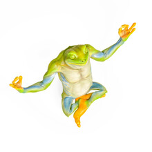 Frog Is Doing Yoga In Isometric View