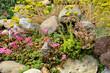 Leinwanddruck Bild Garten 1104